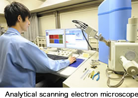 Analytical scanning electron microscope